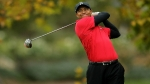 Agreden a Tiger Woods con un hot dog - Noticias de perros calientes